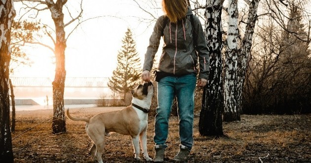 chien avec sa maîtresse