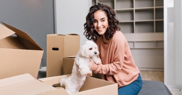 chien dans un carton avec sa maîtresse