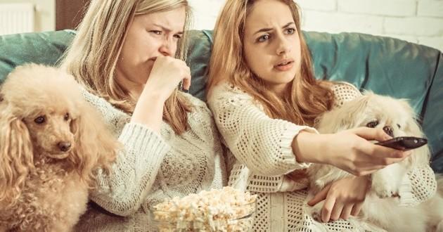 chiens qui regardent la télé