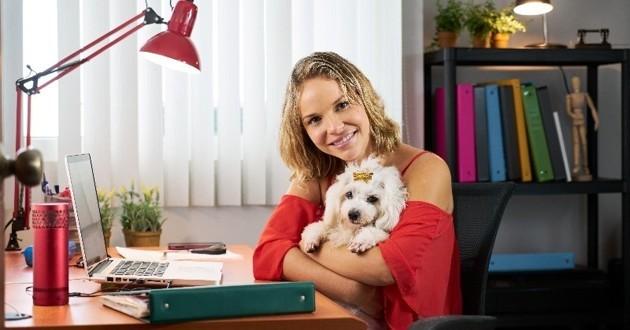 chien au bureau