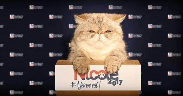 Nicole chatte présidente de la république