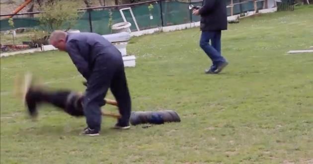 chien maltraité par un éducateur canin