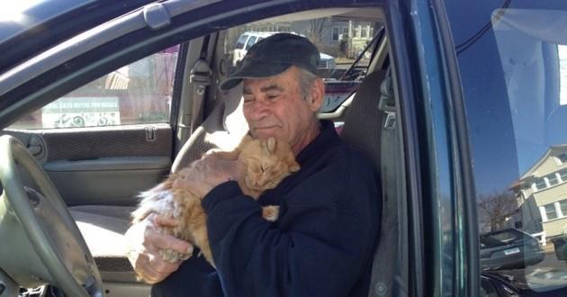 un homme nourrit des chats depuis 22 ans