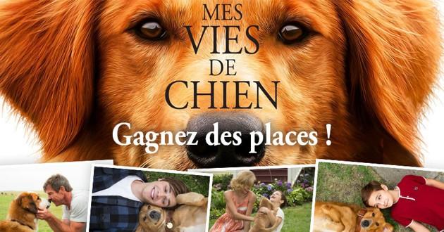 Concours : gagnez votre place de cinéma pour le film «Mes vies de Chien» !