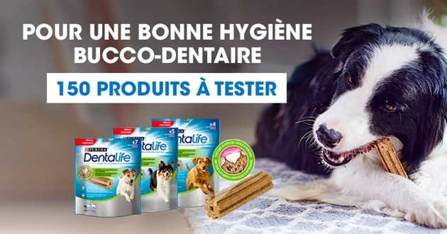 PURINA Dentalife®