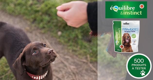 """Testez gratuitement les friandises Equilibre & Instinct """"Vitalité & Récompense"""" avec votre chien"""