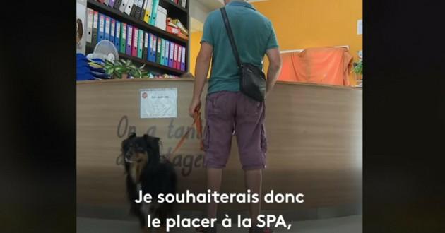 abandon chien SPA