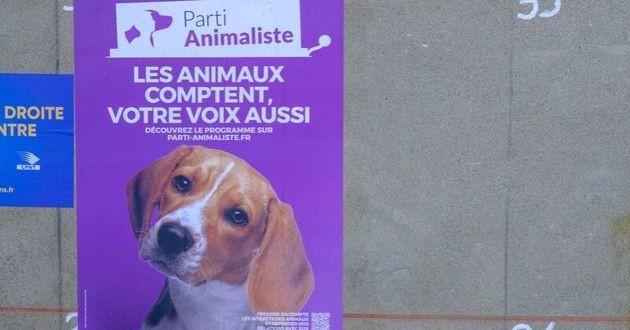 affiche du parti animaliste