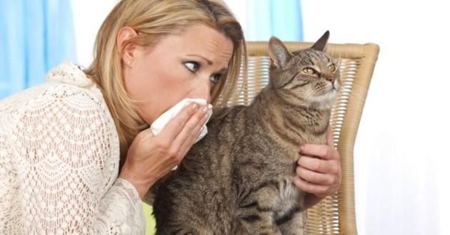 femme qui eternue a cause d'un chat