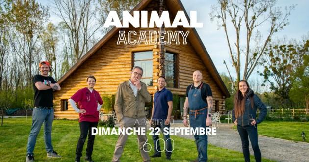 animal academy tf1 dechavanne