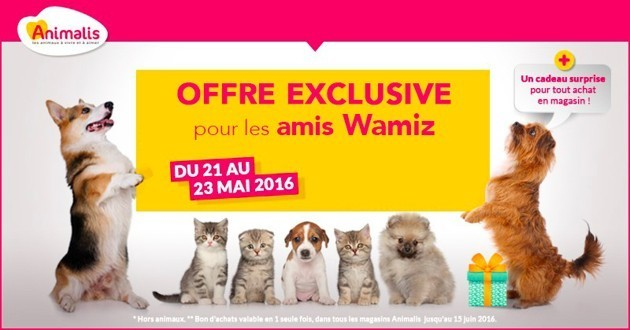 20% de réduction chez Animalis avec un code réservé aux lecteurs de Wamiz !