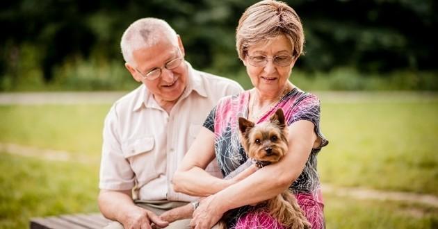 Les chiens, des super-héros pour les personnes âgées ? Une spécialiste vous explique tout !