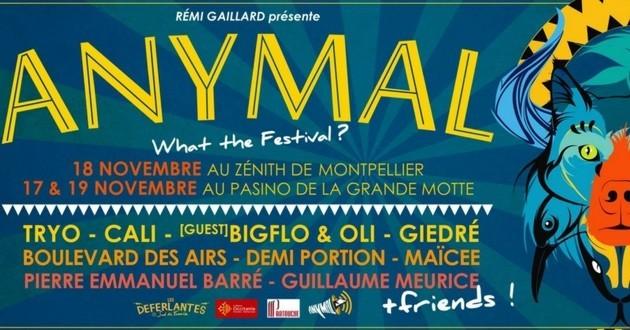 Festival Anymal Remi Gaillard
