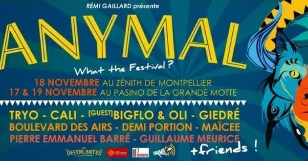 Rémi Gaillard festival Anymal