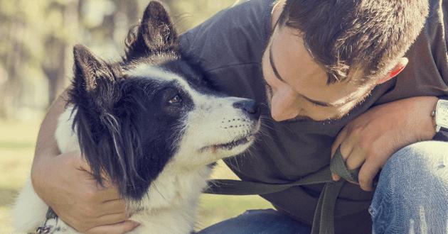 10 arguments imparables pour convaincre un proche d'adopter un chien