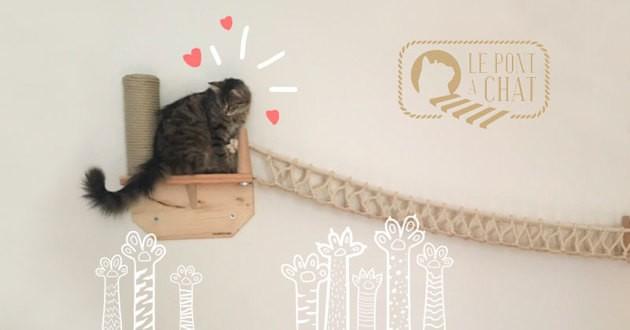 le pont chat le cadeau dont votre matou r ve jour et. Black Bedroom Furniture Sets. Home Design Ideas
