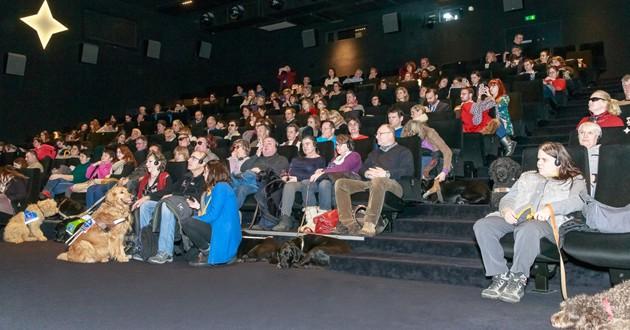 Chiens au cinéma