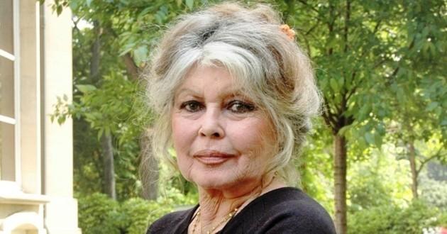 Brigitte Bardot à l'assaut de l'Espagne et de son roi pour défendre les lévriers espagnols