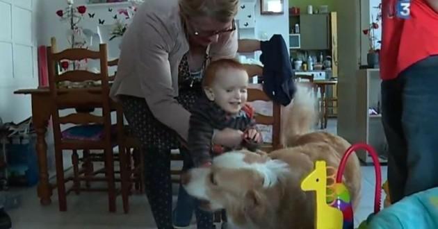 Noham et Joy chien d'assistance aveugle