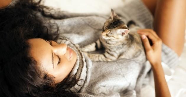 comment reconna tre un chat heureux comprendre son