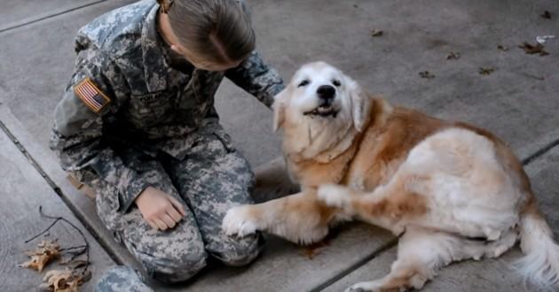 L'accueil réservé par ce chien à sa maîtresse soldate rentrée de mission va vous émouvoir