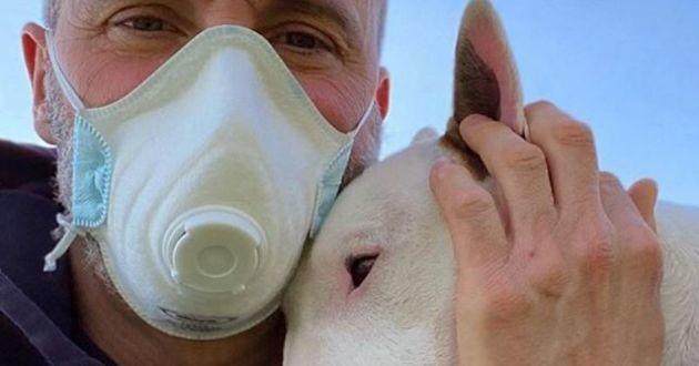 un homme avec un masque et son bull terrier