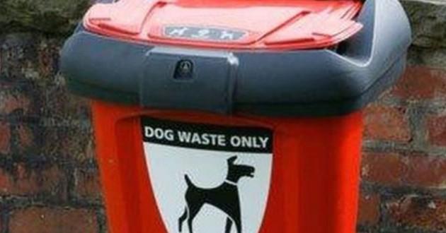Poubelle pour caca de chien