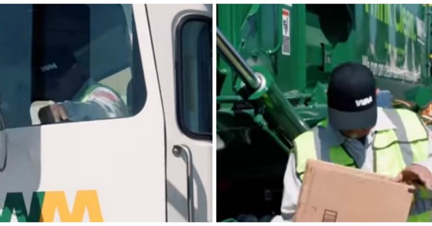 carton camion chaton