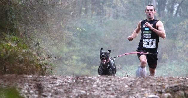 Le canicross, ce sport qui a du chien !