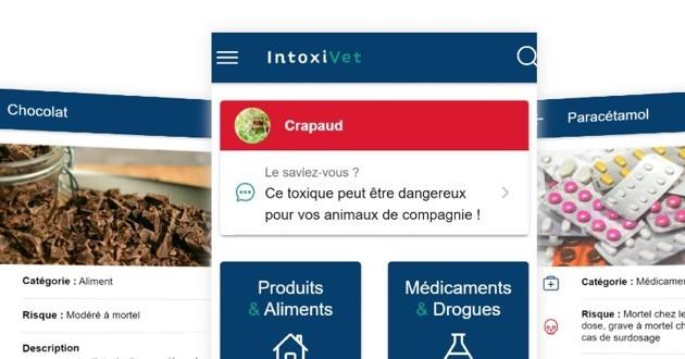 application IntoxiVet