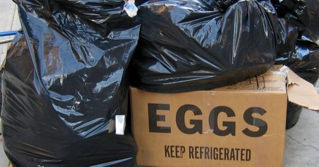 carton près des poubelles