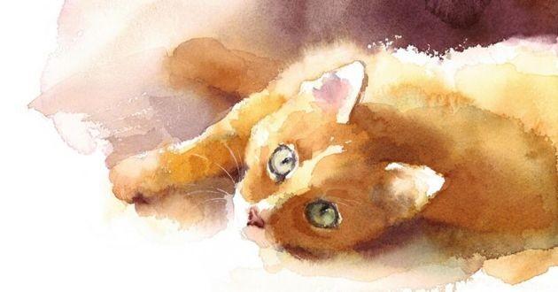 aquarelle d'un chat roux