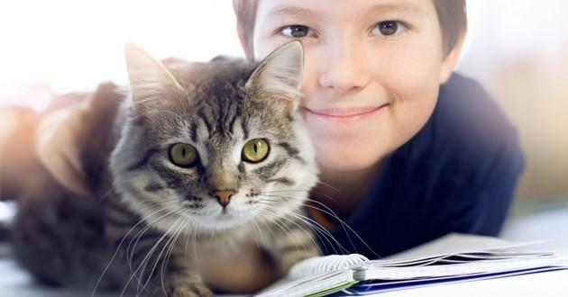 chat garçon enfant école