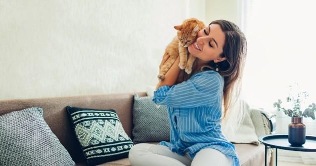 chat sur le canapé avec son humaine