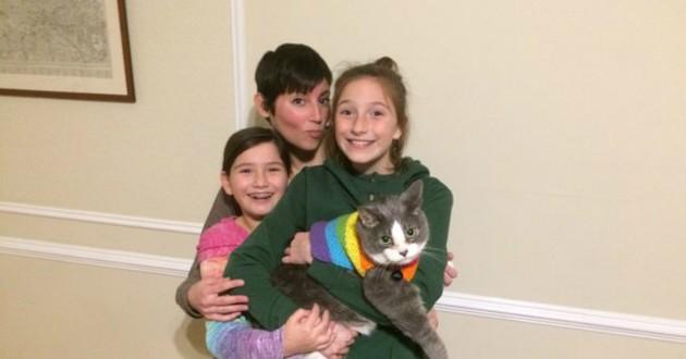 chat dans les bras