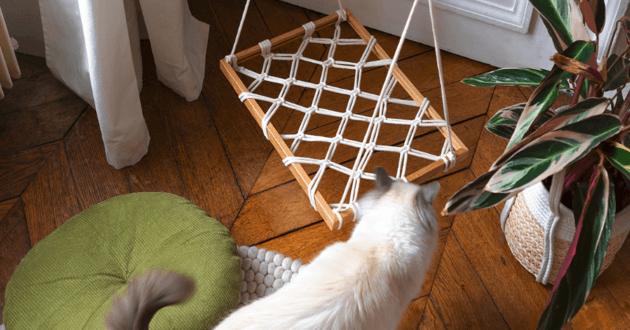 Hamac chat DIY