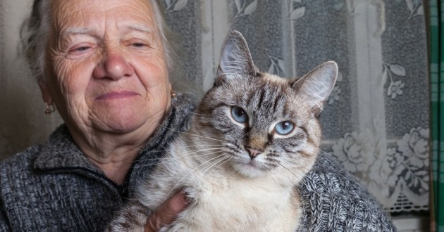 mamie et chats