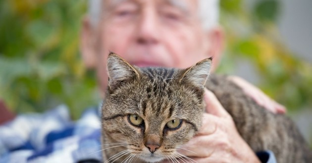 chat personne âgée