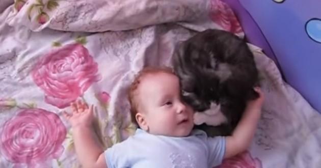 La réaction de ce chat lorsque le bébé de son humaine se met à pleurer va beaucoup vous toucher !