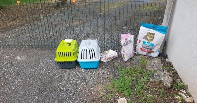 Elle trouve deux caisses abandonnées devant chez elle : en regardant à l'intérieur, elle est prise de frissons