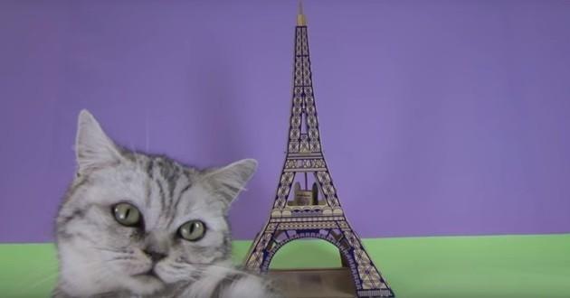 Monuments sont des jouets pour chats