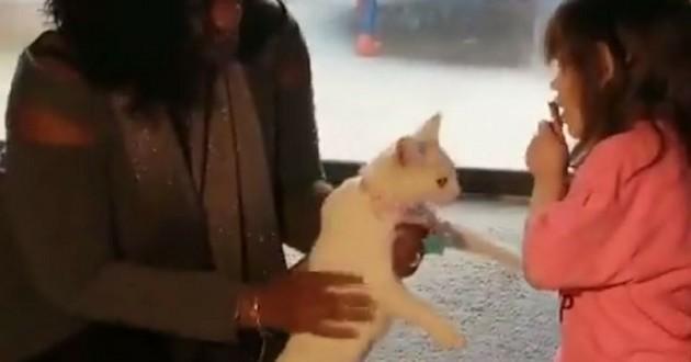 chat fillette aveugle cancer