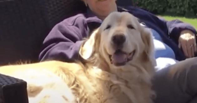 Cheddar le chien et Jean sa voisine