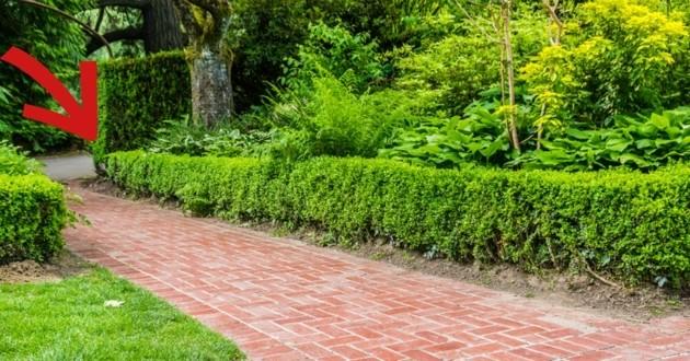 chemin d'un jardin