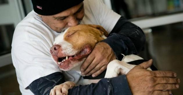 chien et maître câlins