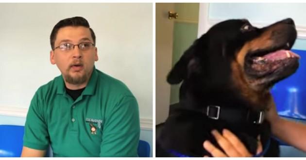 chien disparu 8 ans