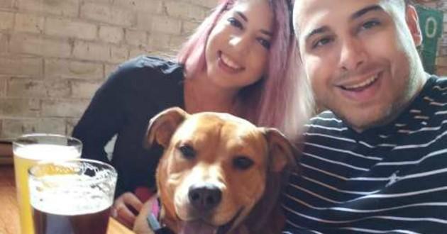 chien et couple