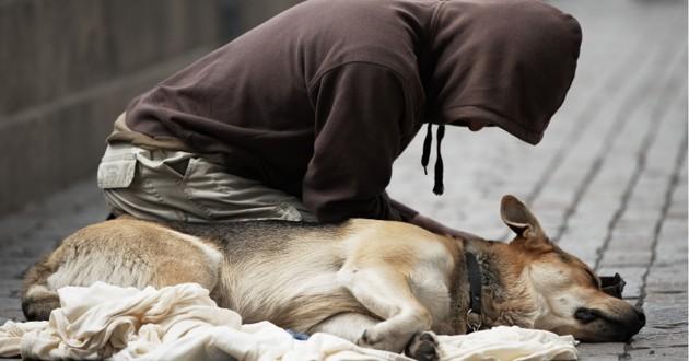 une personne sans abri et son chien