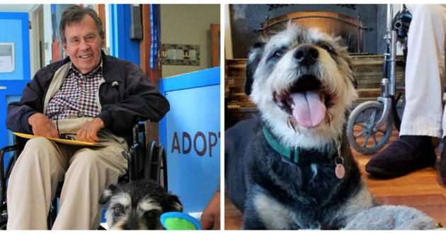 homme handicapé et son chien