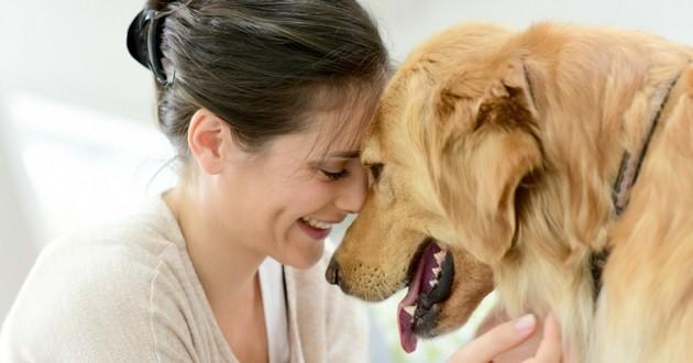 chien femme